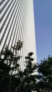 庭園から見上げる歌舞伎座タワー。青空に映えて絶景かな!