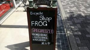 frog1