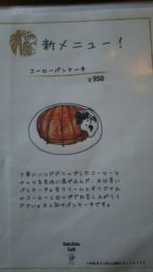 DSC_0339